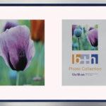 OSLO MasterLine Bilderrahmen Und Passepartout 26 X 36 Silber Blau Kunststoff Echt Glas Mit 2 Ausschnitten 13 X 18 Fotos Bilder